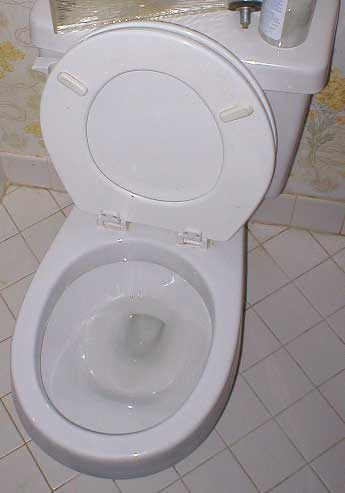 cleaned toilet bowl