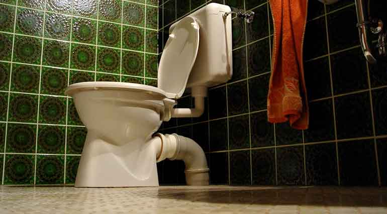 dual flash toilet