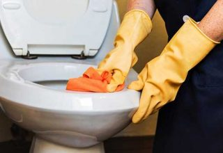 cleaning smelly toilet