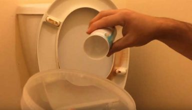 Remove Urine Stains From Toilet Seat